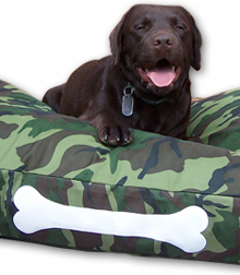 Labrador on Fatboy Doggielounge Dog Bed