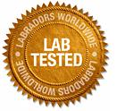 Labrador Tested