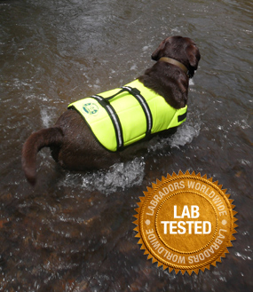 Dog Life Preserver