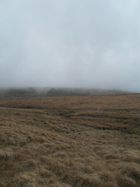 Fog on Dartmoor