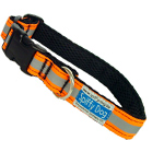 Spiffy Dog Reflective Collar