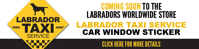 The Labradors Worldwide Store - Click to visit