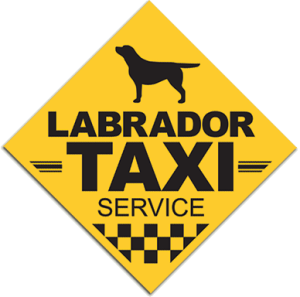 Labrador Taxi service vehicle sticker