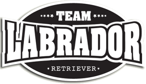 Team Labrador vehicle sticker