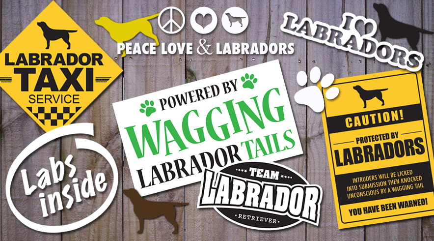 Labrador Retriever vehicle stickers and decals